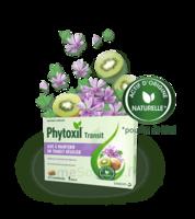 Phytoxil Transit Comprimés B/20 à CANALS