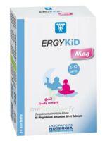 Ergykid Mag Poudre solution buvable 14 Sachets à CANALS