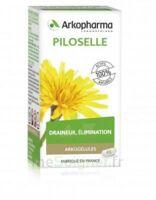Arkogélules Piloselle Gélules Fl/45 à CANALS