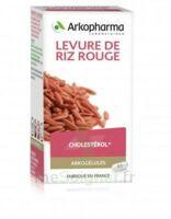 Arkogélules Levure de riz rouge Gélules Fl/45 à CANALS