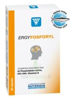 Ergyfosforyl Caps B/60 à CANALS