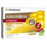 Arkoroyal Dynergie Ginseng Gelée Royale Propolis Solution Buvable 20 Ampoules/10ml à CANALS
