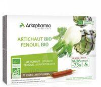 Arkofluide Bio Ultraextract Artichaut Fenouil Solution buvable 20 Ampoules/10ml à CANALS