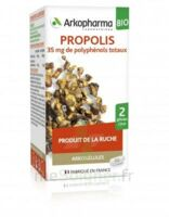 Arkogélules Propolis Bio Gélules Fl/45 à CANALS