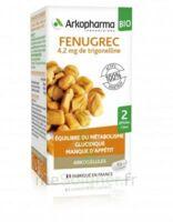 Arkogélules Fenugrec Bio Gélules Fl/40 à CANALS