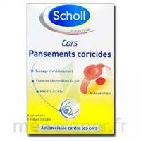 Scholl Pansements Coricides Cors à CANALS
