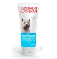 Clément Thékan Shampooing poils blancs T/200ml à CANALS