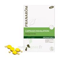 Aromaforce Caps Inhalation Bio B/15 + Inhalateur à CANALS