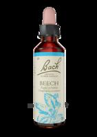 Fleurs De Bach® Original Beech - 20 Ml à CANALS