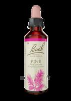Fleurs De Bach® Original Pine - 20 Ml à CANALS